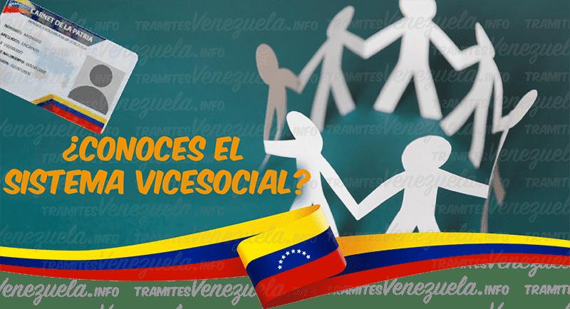 vicesocial consulta
